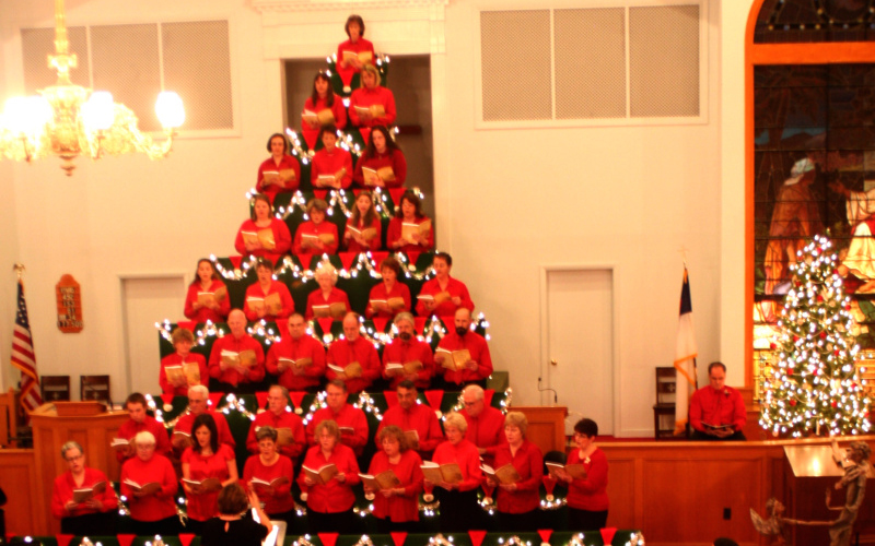 Living Christmas Tree.Thomaston S Living Christmas Tree Sings To The Heavens