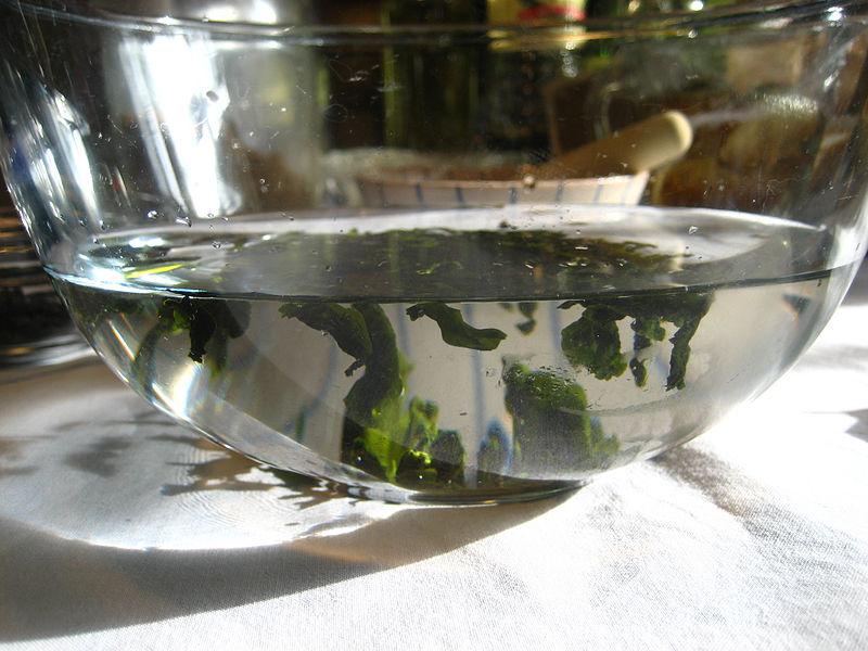 Seaweed Salad at Herring Gut!