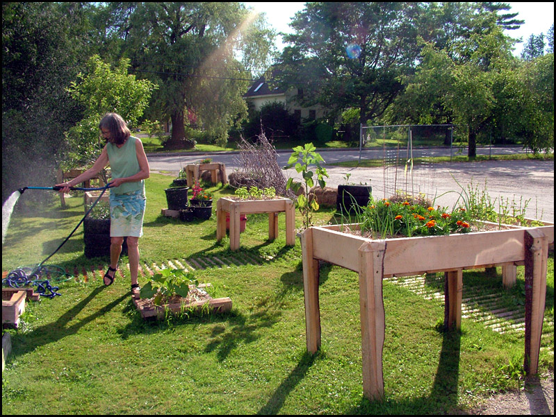 Accessible Garden Gets Off The Ground In Belfast