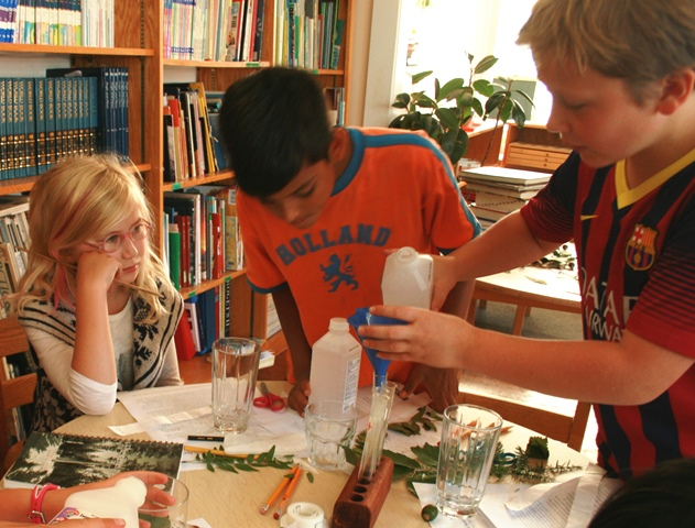 A Few Of The Current CHMS Elementary Students Stephanie Altschul Vishal Mellor And Cameron Brown Work On Plant Experiment Photo Courtesy Childrens