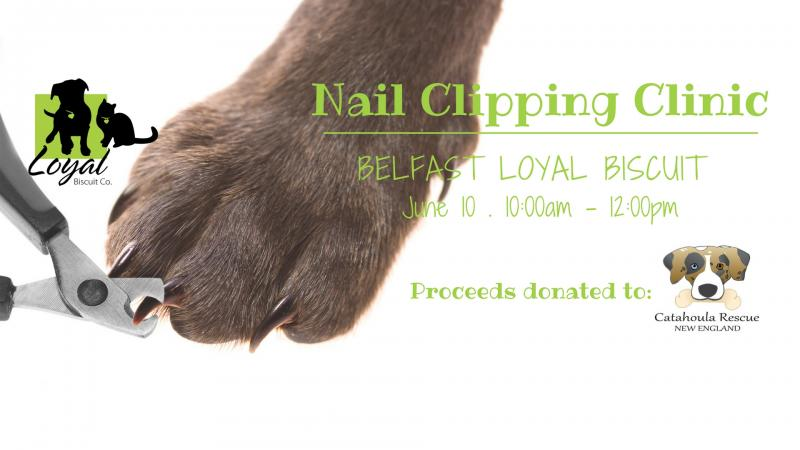 Nail Clipping Clinic Belfast Penbay Pilot