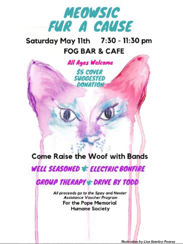 Meowsic Fur A Cause to bring local bands together | PenBay Pilot