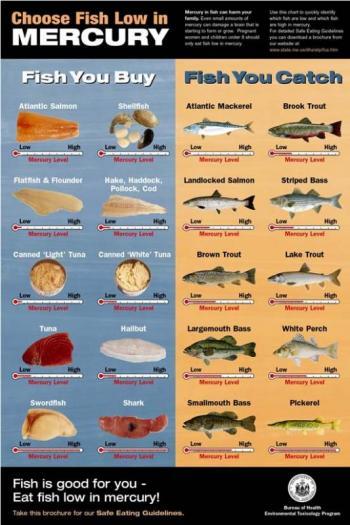 The zen of fish with mercury rising penbay pilot for Mercury levels in fish