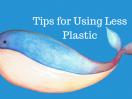 zero waste plastic free